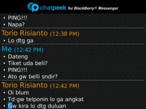 ChatPeek 4
